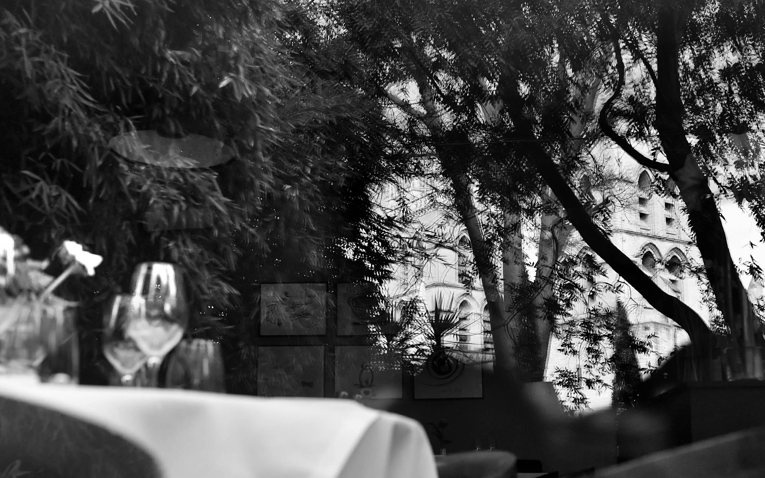 Restaurant le petit jardin le restaurant for Le petit jardin
